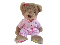 Fund Raiser Teddy Bear